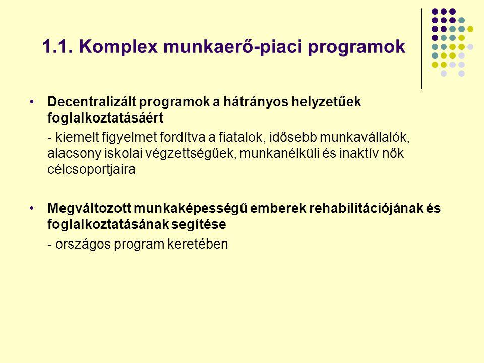 1.1. Komplex munkaerő-piaci programok