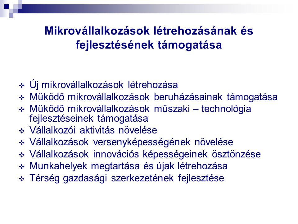 Mikrovállalkozások létrehozásának és fejlesztésének támogatása