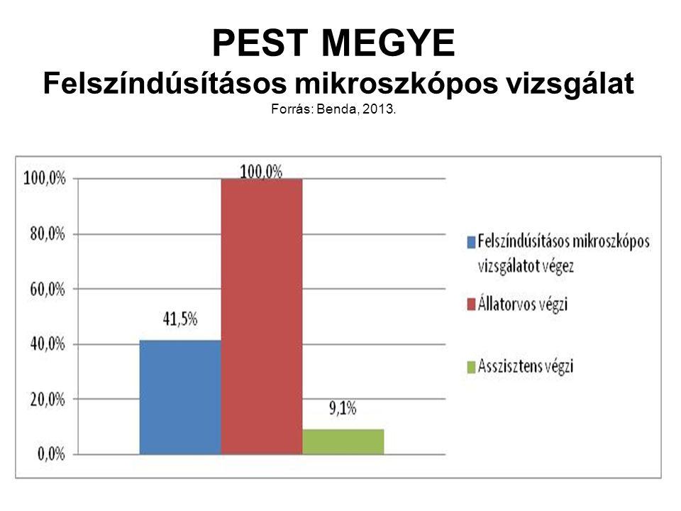 PEST MEGYE Felszíndúsításos mikroszkópos vizsgálat Forrás: Benda, 2013.