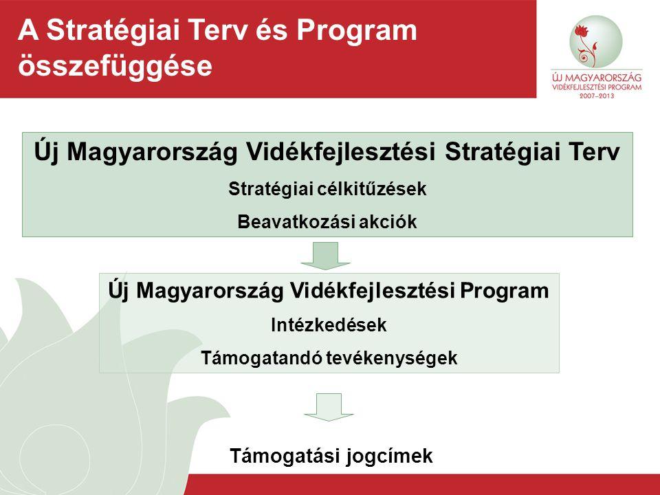 A Stratégiai Terv és Program összefüggése