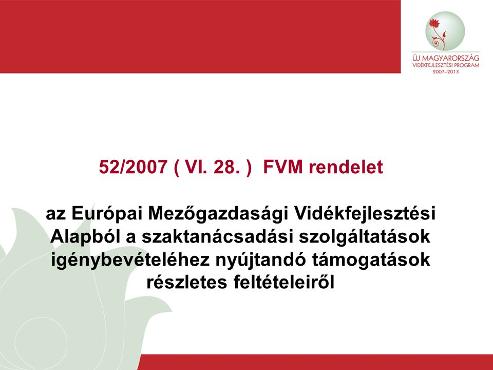 52/2007 ( VI. 28.
