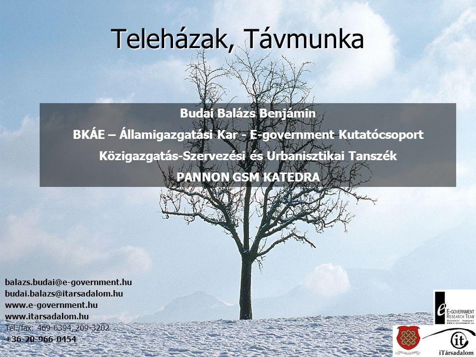 Teleházak, Távmunka Budai Balázs Benjámin