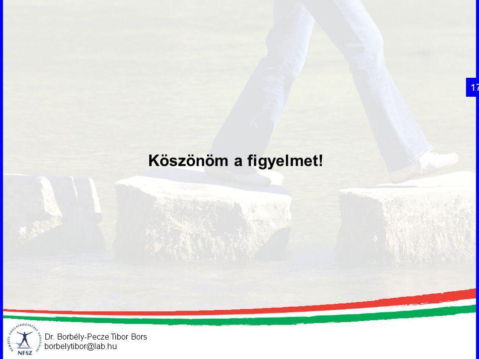 17 Köszönöm a figyelmet! Dr. Borbély-Pecze Tibor Bors borbelytibor@lab.hu