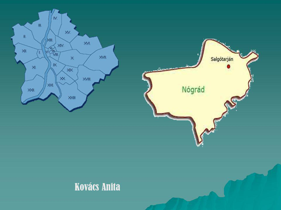 Kovács Anita