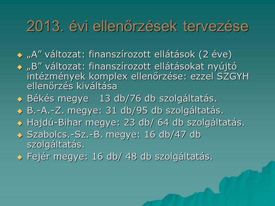 2013. évi ellenőrzések tervezése