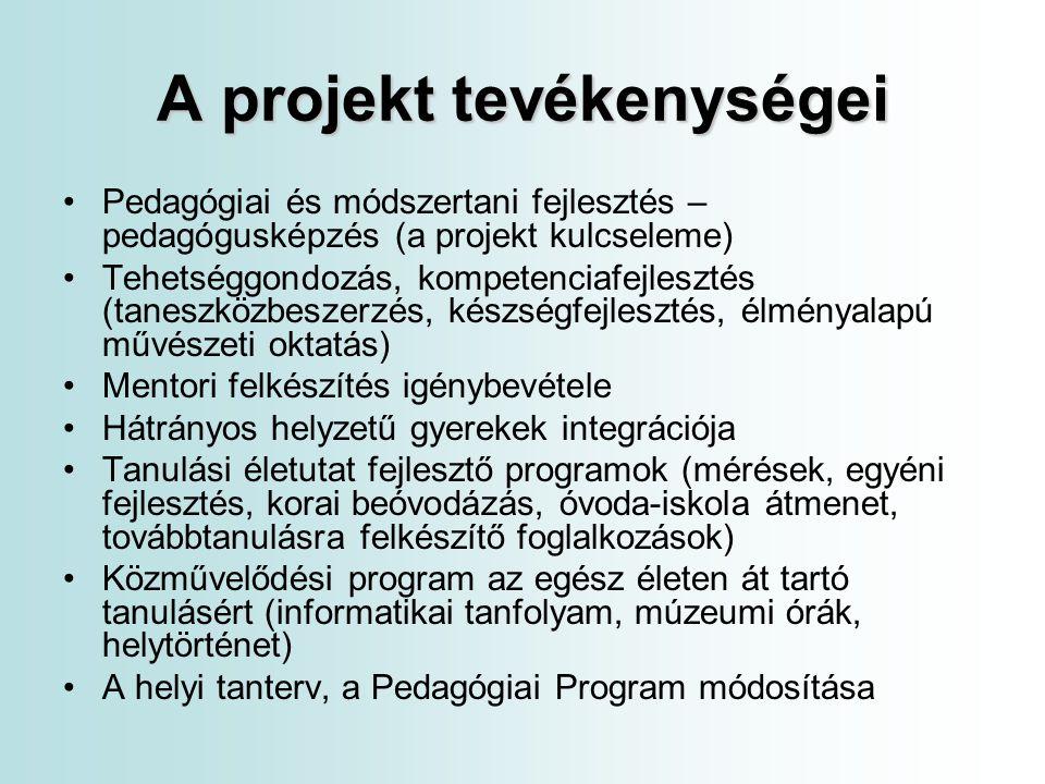 A projekt tevékenységei