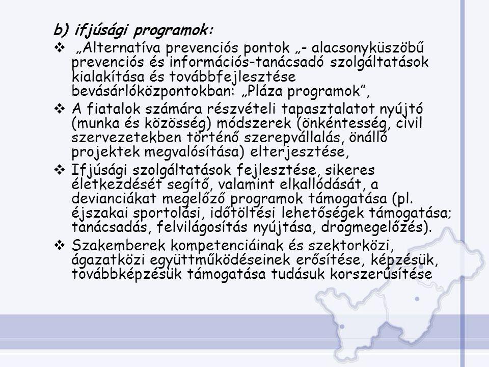 b) ifjúsági programok: