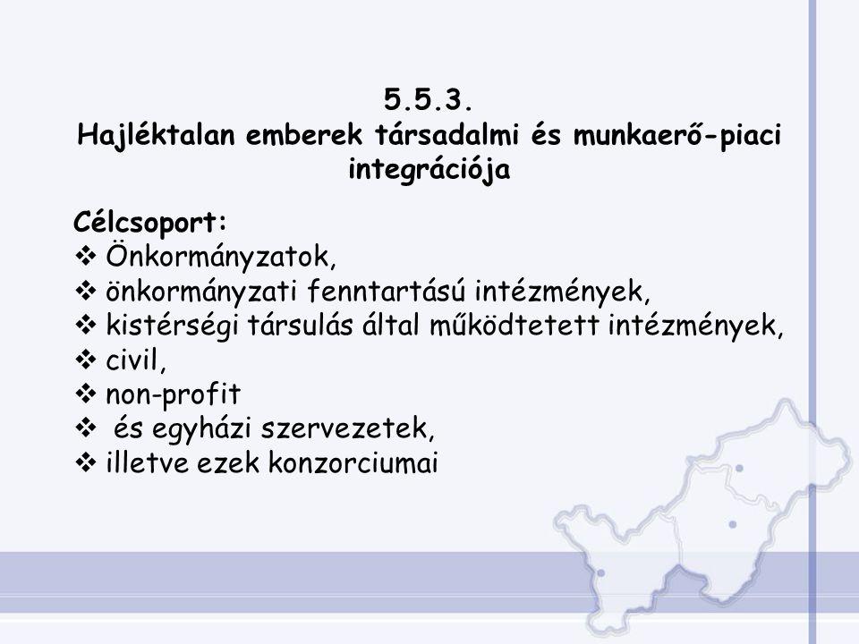5.5.3. Hajléktalan emberek társadalmi és munkaerő-piaci integrációja