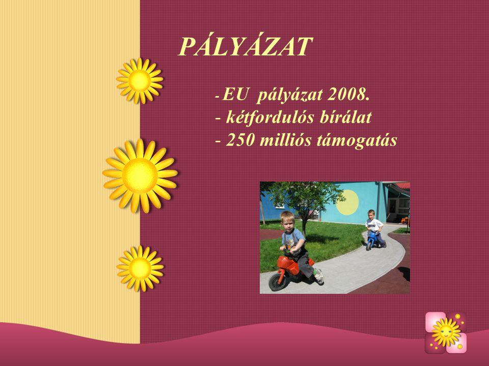 PÁLYÁZAT - EU pályázat 2008. kétfordulós bírálat 250 milliós támogatás