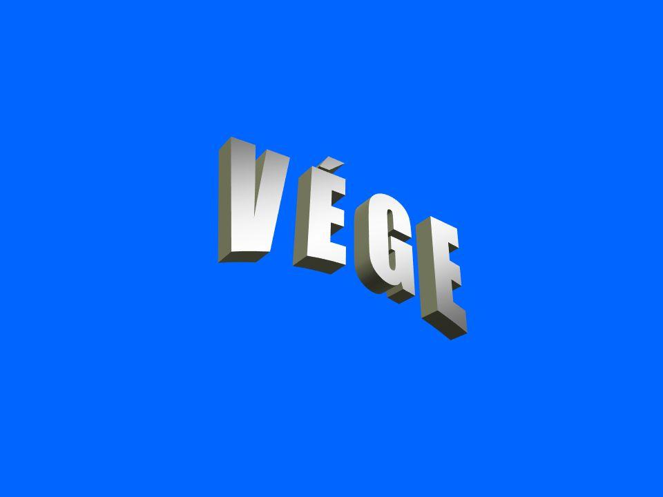 2017.04.04. V É G E