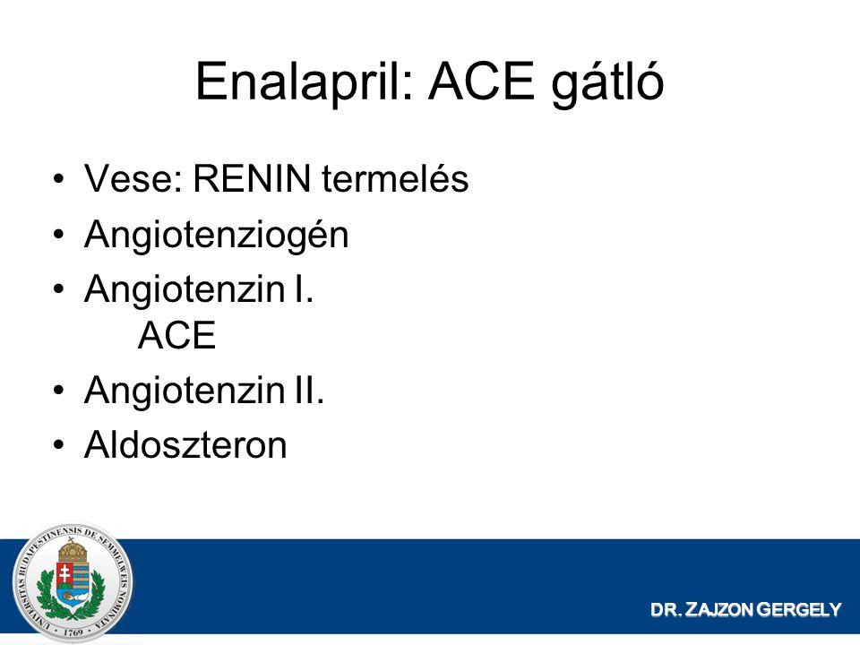 Enalapril: ACE gátló Vese: RENIN termelés Angiotenziogén