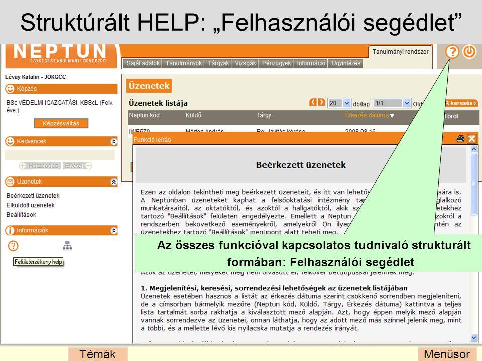 """Struktúrált HELP: """"Felhasználói segédlet"""