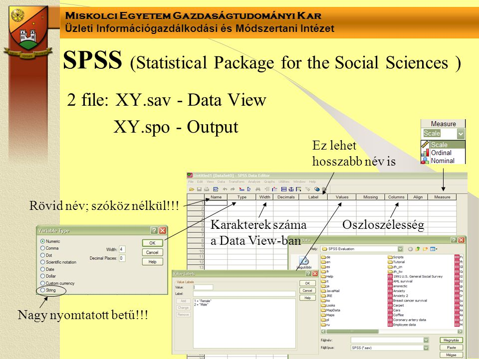 SPSS (Statistical Package for the Social Sciences )