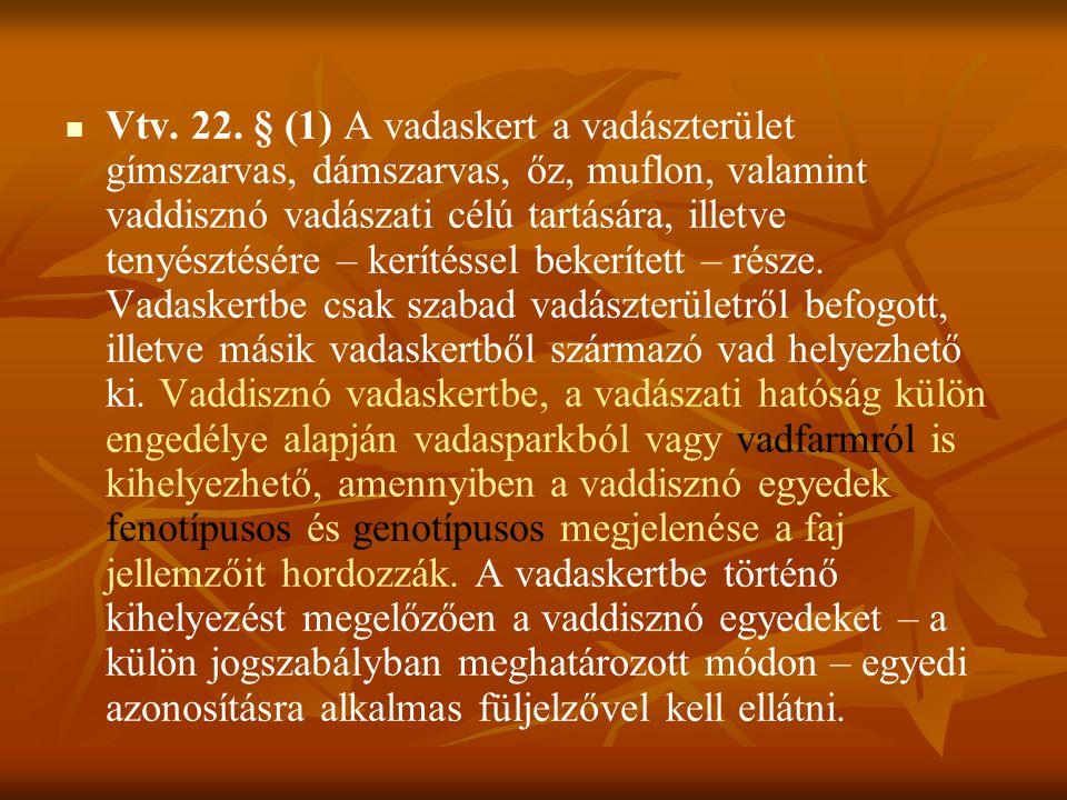 Vtv. 22.