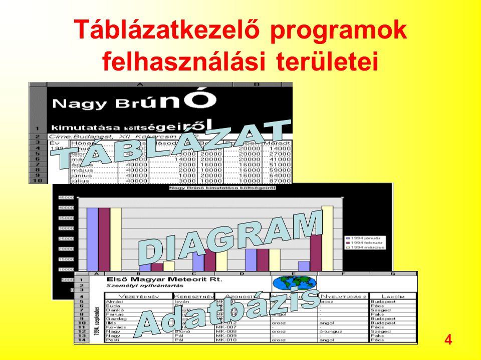 Táblázatkezelő programok felhasználási területei