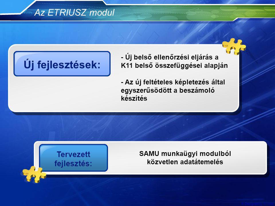 Tervezett fejlesztés: SAMU munkaügyi modulból közvetlen adatátemelés