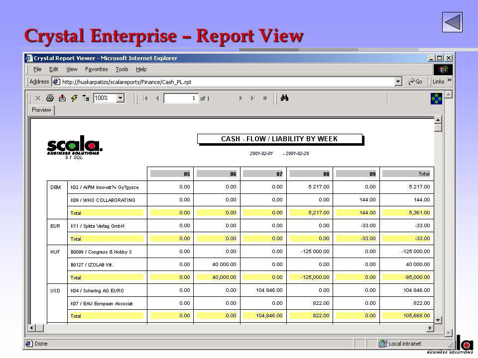 Crystal Enterprise – Report View