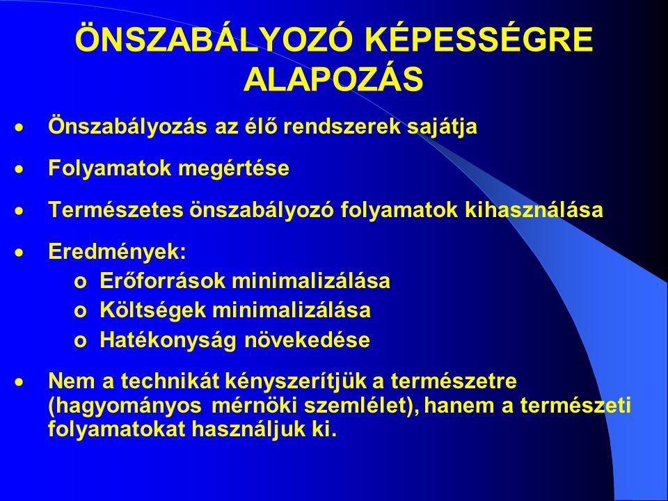 ÖNSZABÁLYOZÓ KÉPESSÉGRE ALAPOZÁS