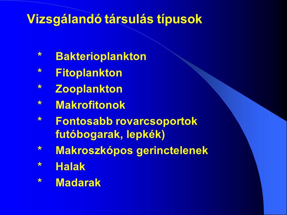 Vizsgálandó társulás típusok * Bakterioplankton
