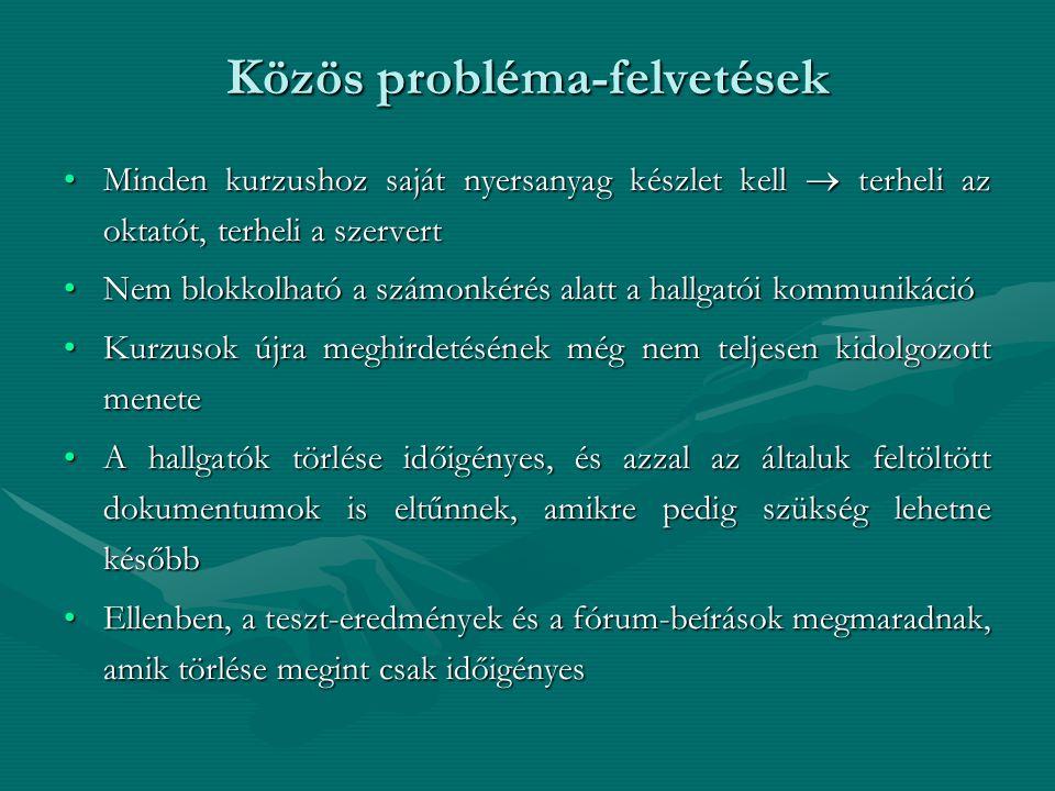 Közös probléma-felvetések