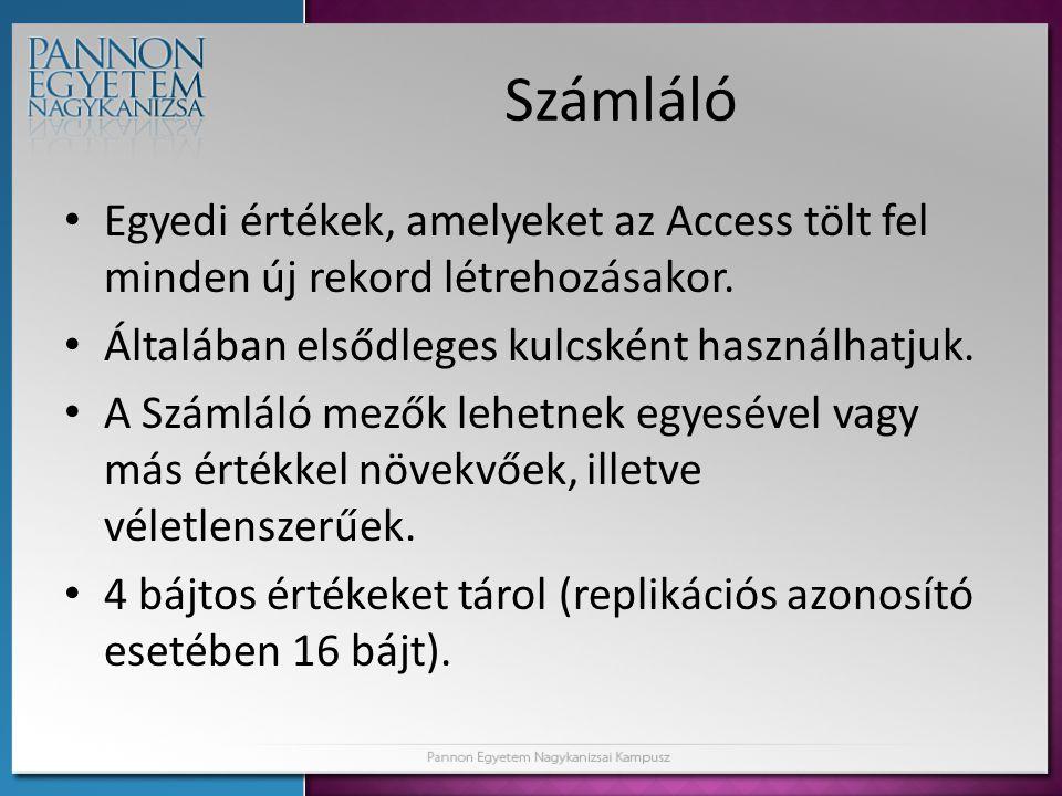 Számláló Egyedi értékek, amelyeket az Access tölt fel minden új rekord létrehozásakor. Általában elsődleges kulcsként használhatjuk.