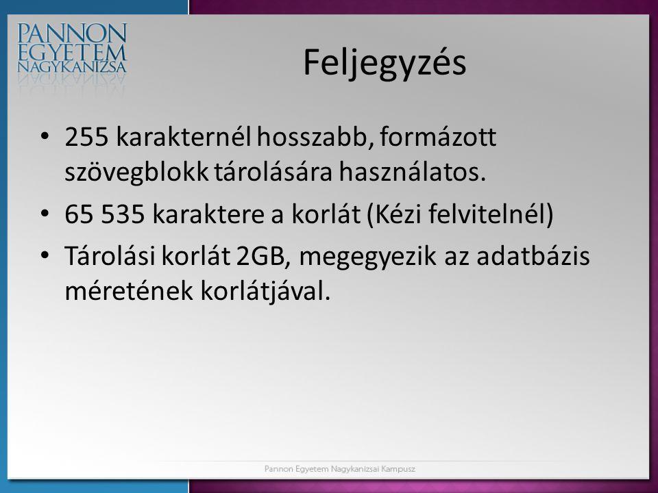 Feljegyzés 255 karakternél hosszabb, formázott szövegblokk tárolására használatos. 65 535 karaktere a korlát (Kézi felvitelnél)
