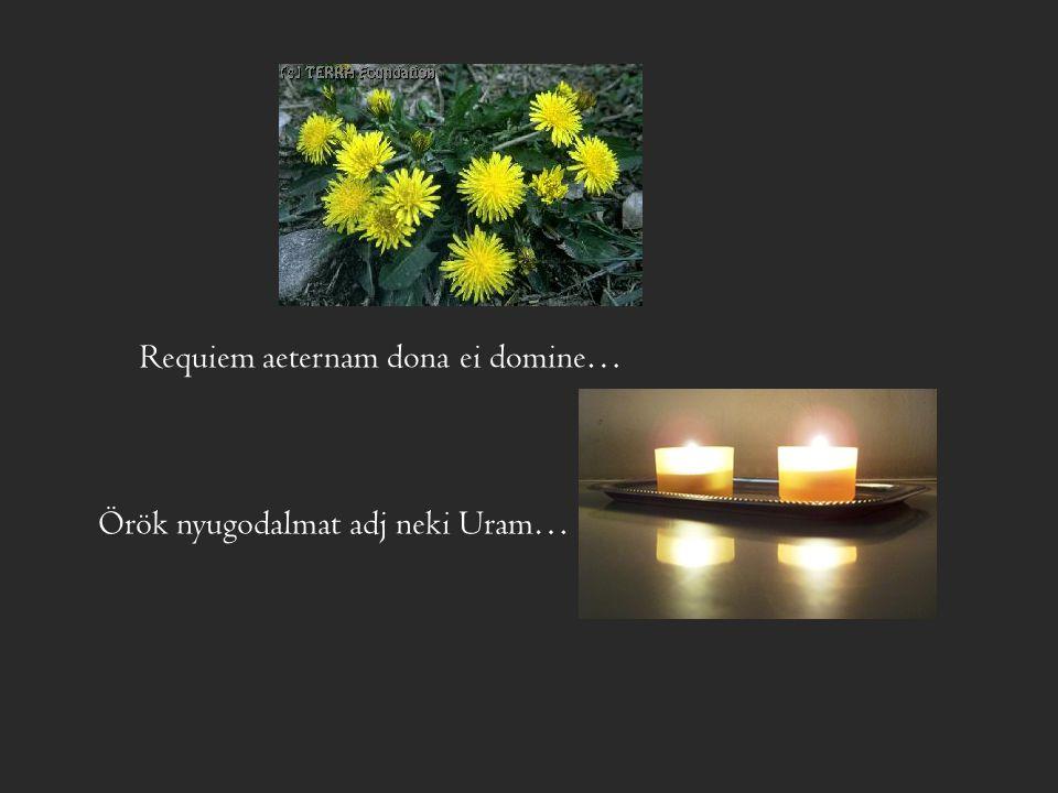Requiem aeternam dona ei domine…