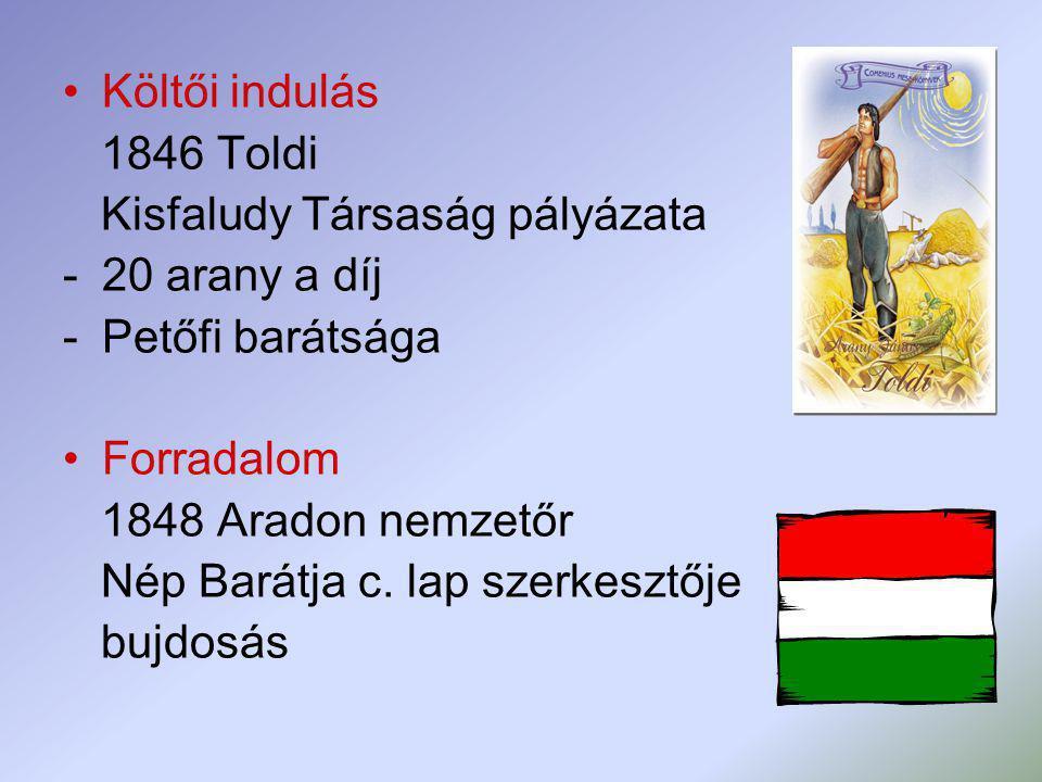 Költői indulás 1846 Toldi. Kisfaludy Társaság pályázata. 20 arany a díj. Petőfi barátsága. Forradalom.