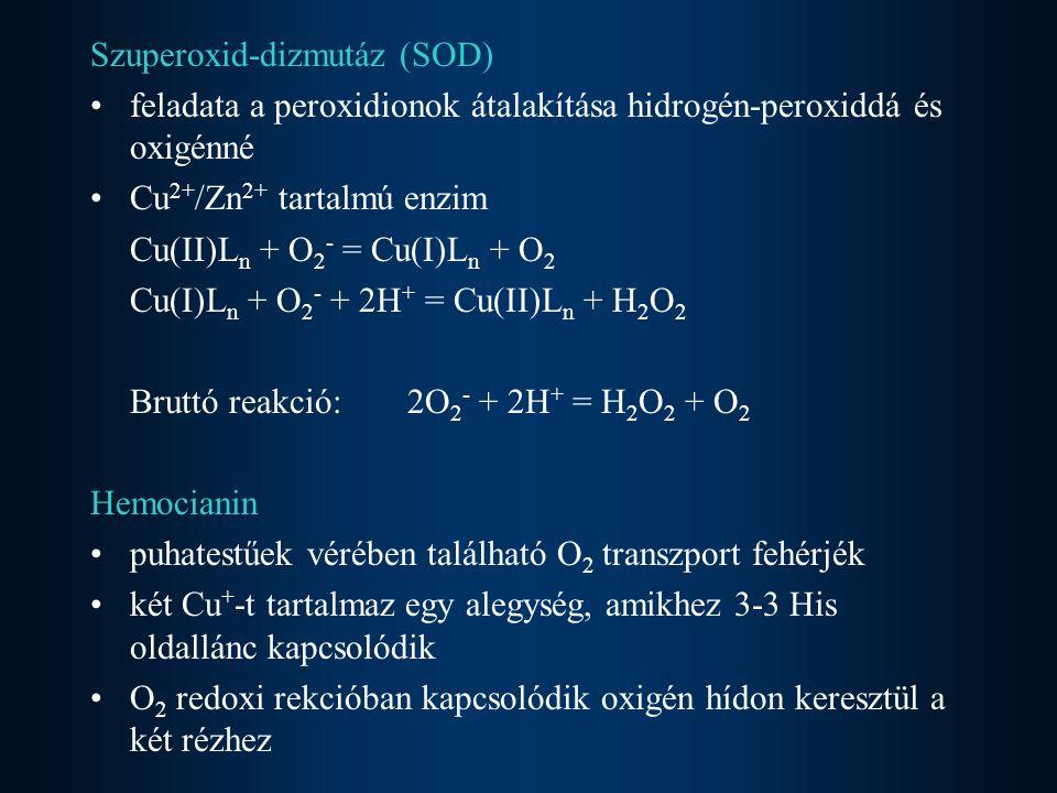 Szuperoxid-dizmutáz (SOD)