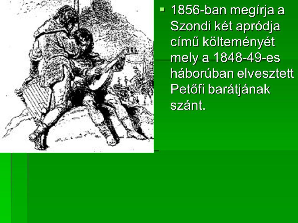 1856-ban megírja a Szondi két apródja című költeményét mely a 1848-49-es háborúban elvesztett Petőfi barátjának szánt.