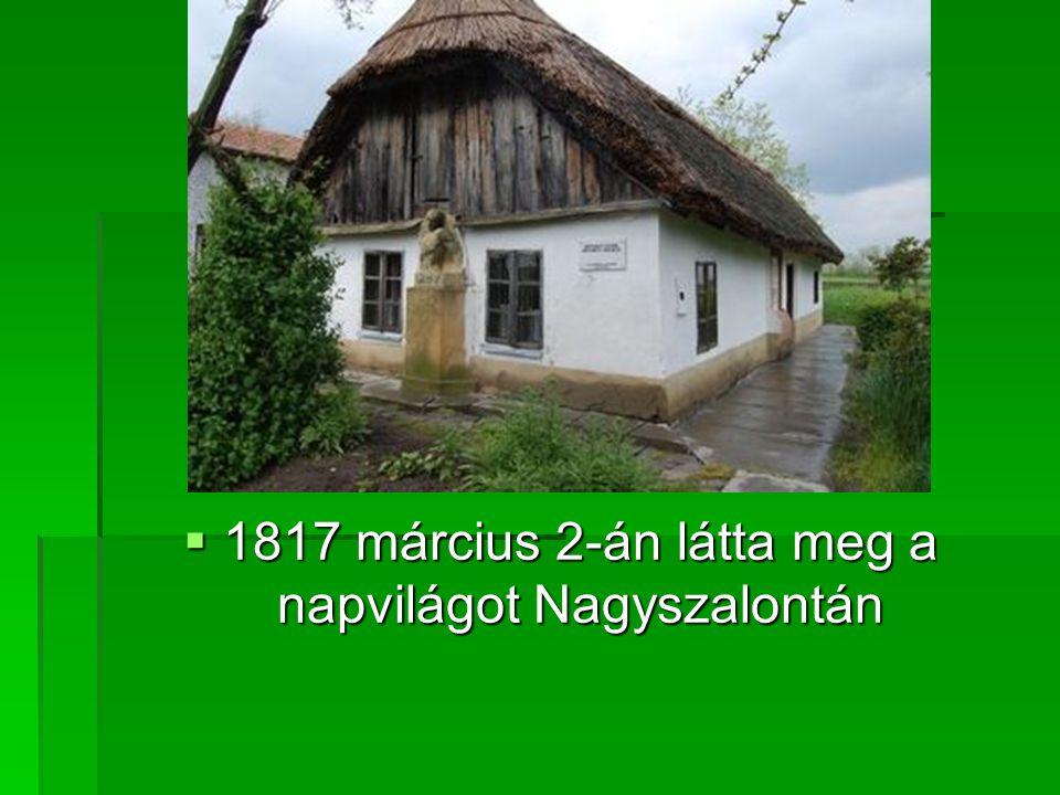 1817 március 2-án látta meg a napvilágot Nagyszalontán