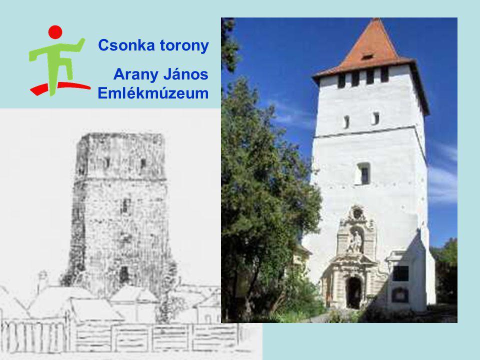Csonka torony Arany János Emlékmúzeum