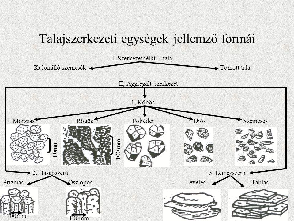 Talajszerkezeti egységek jellemző formái