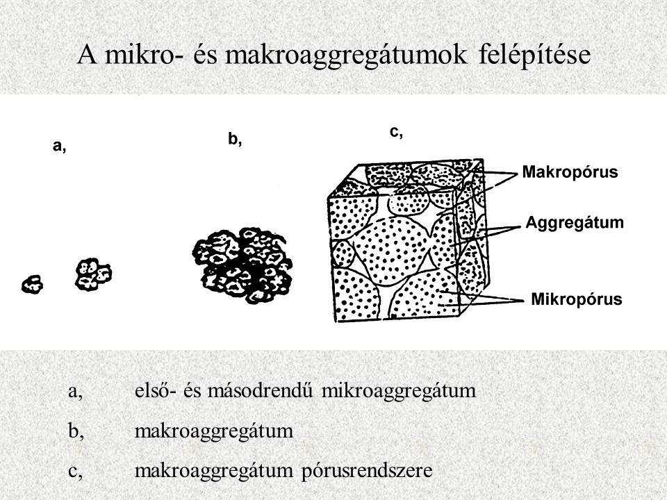 A mikro- és makroaggregátumok felépítése