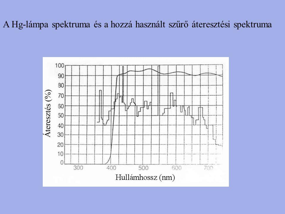 A Hg-lámpa spektruma és a hozzá használt szűrő áteresztési spektruma