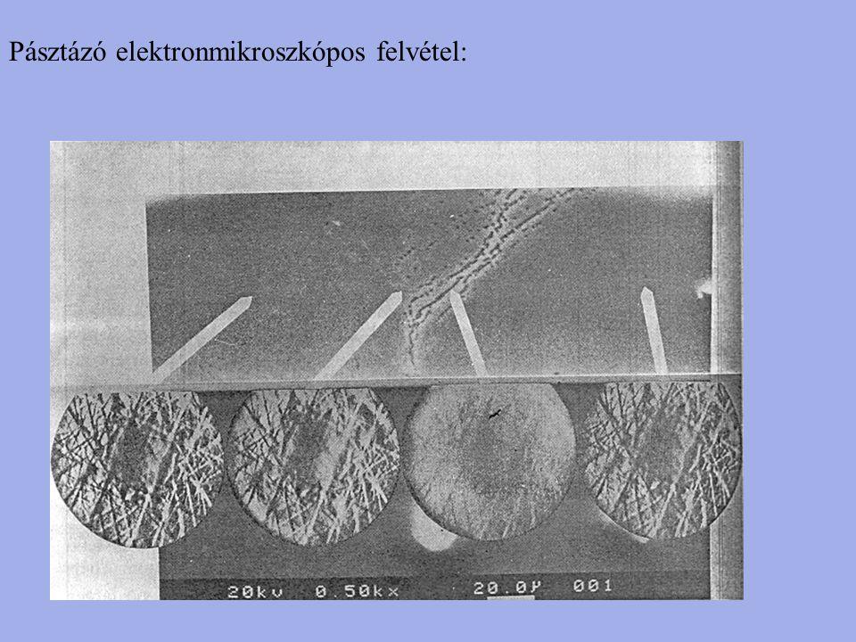Pásztázó elektronmikroszkópos felvétel: