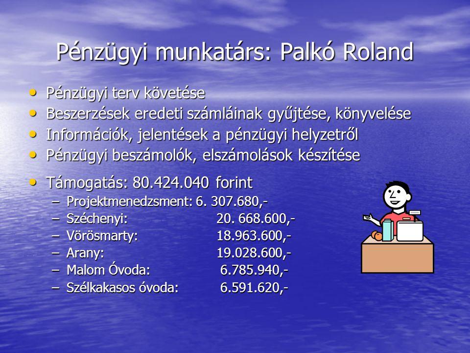 Pénzügyi munkatárs: Palkó Roland
