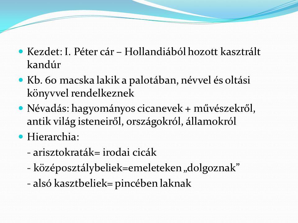 Kezdet: I. Péter cár – Hollandiából hozott kasztrált kandúr