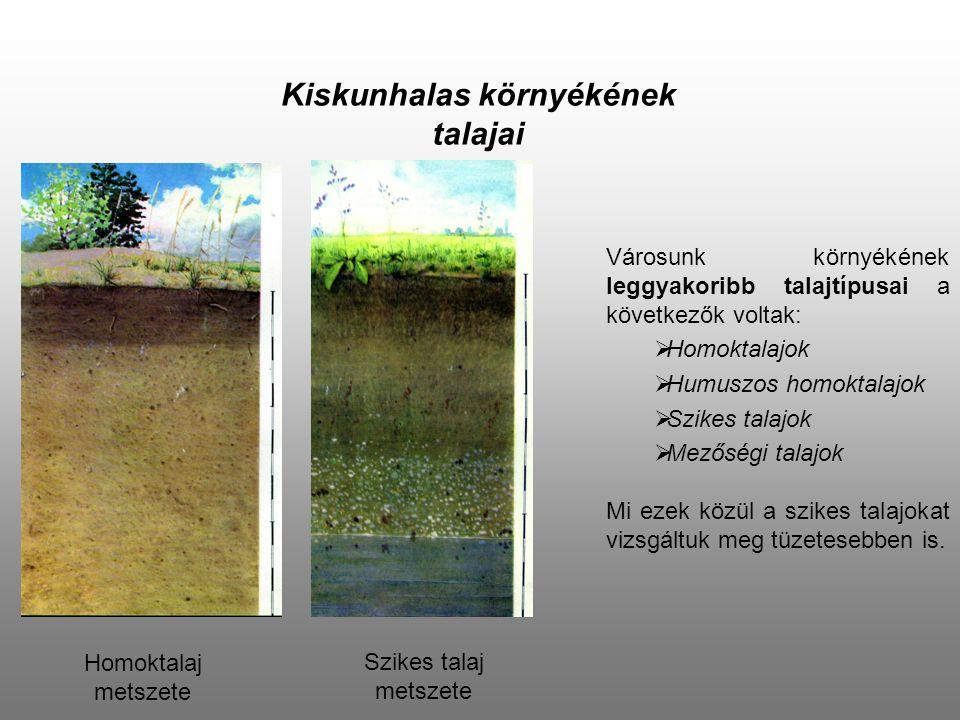 Kiskunhalas környékének talajai
