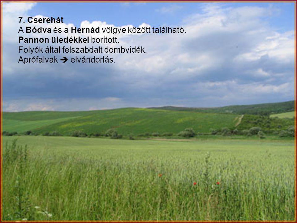 7. Cserehát A Bódva és a Hernád völgye között található. Pannon üledékkel borított. Folyók által felszabdalt dombvidék.