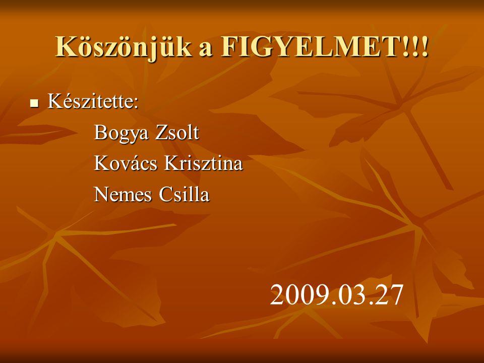 Köszönjük a FIGYELMET!!! 2009.03.27 Készitette: Bogya Zsolt