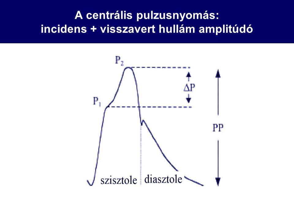 A centrális pulzusnyomás: incidens + visszavert hullám amplitúdó