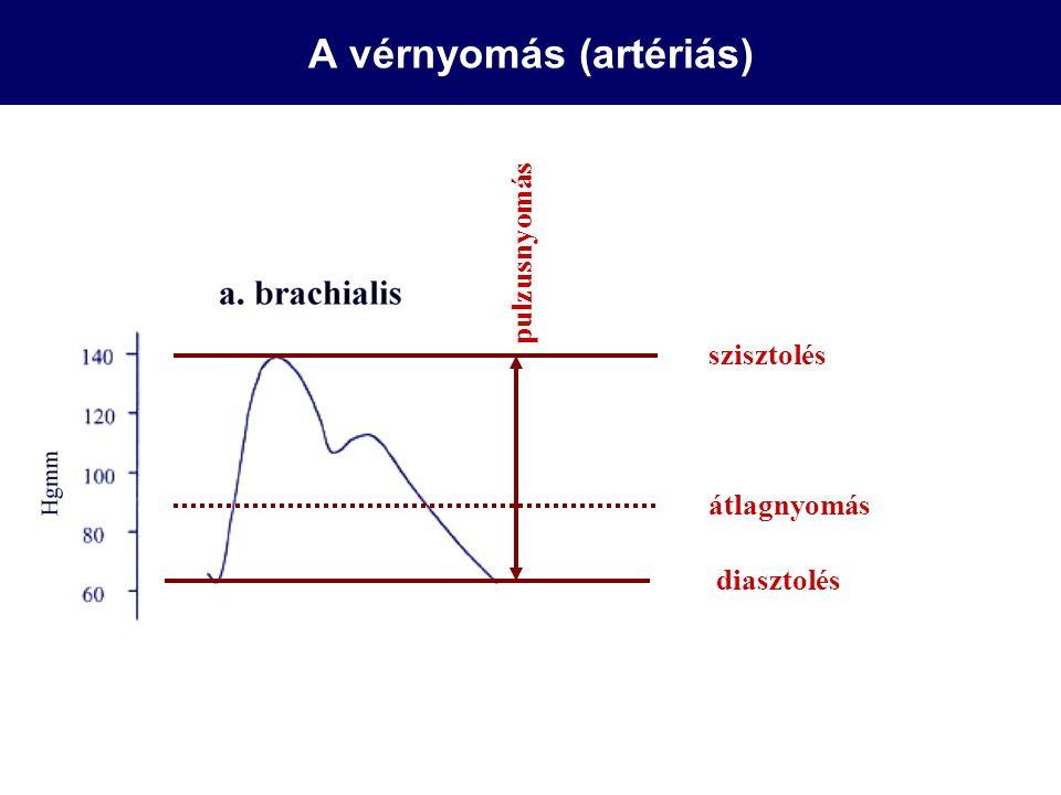 A vérnyomás (artériás)