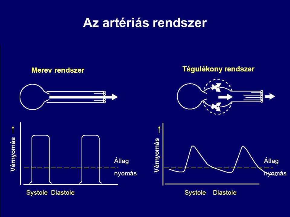 Az artériás rendszer Tágulékony rendszer Merev rendszer Vérnyomás
