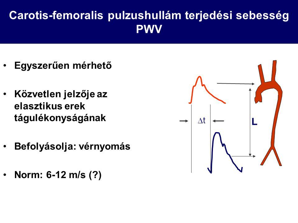 Carotis-femoralis pulzushullám terjedési sebesség PWV