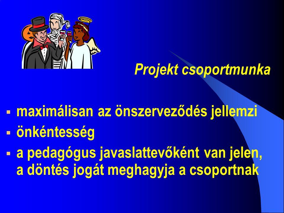 Projekt csoportmunka maximálisan az önszerveződés jellemzi. önkéntesség.