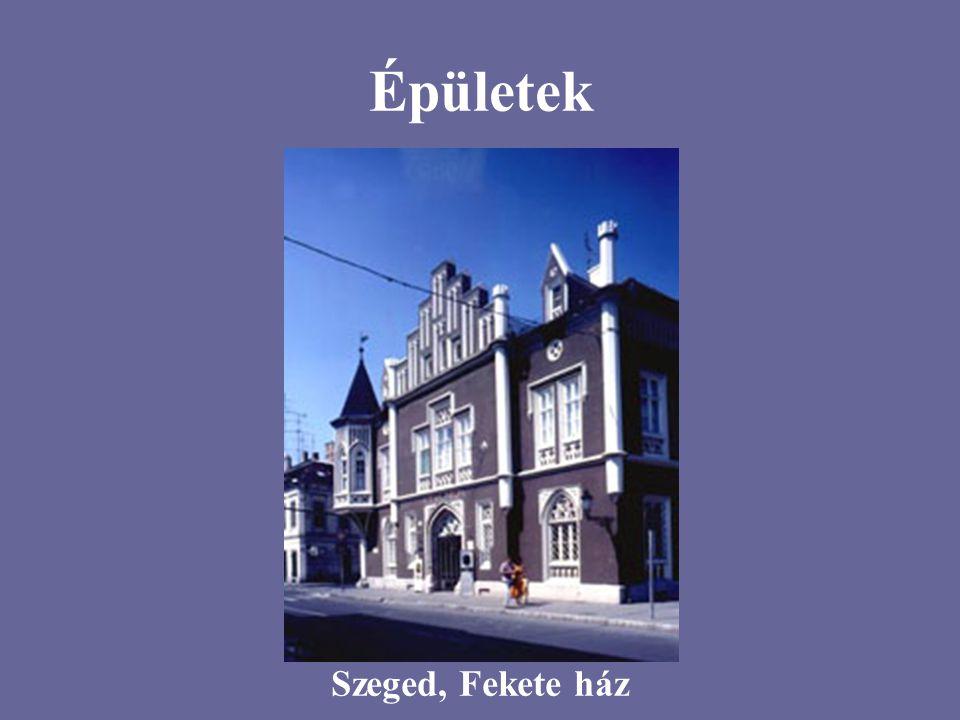 Épületek Szeged, Fekete ház