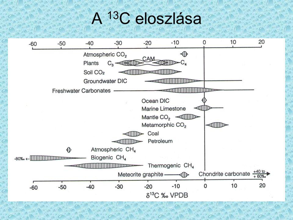 A 13C eloszlása