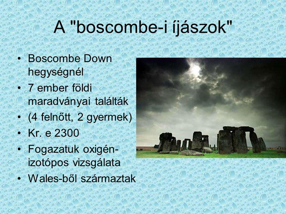 A boscombe-i íjászok Boscombe Down hegységnél