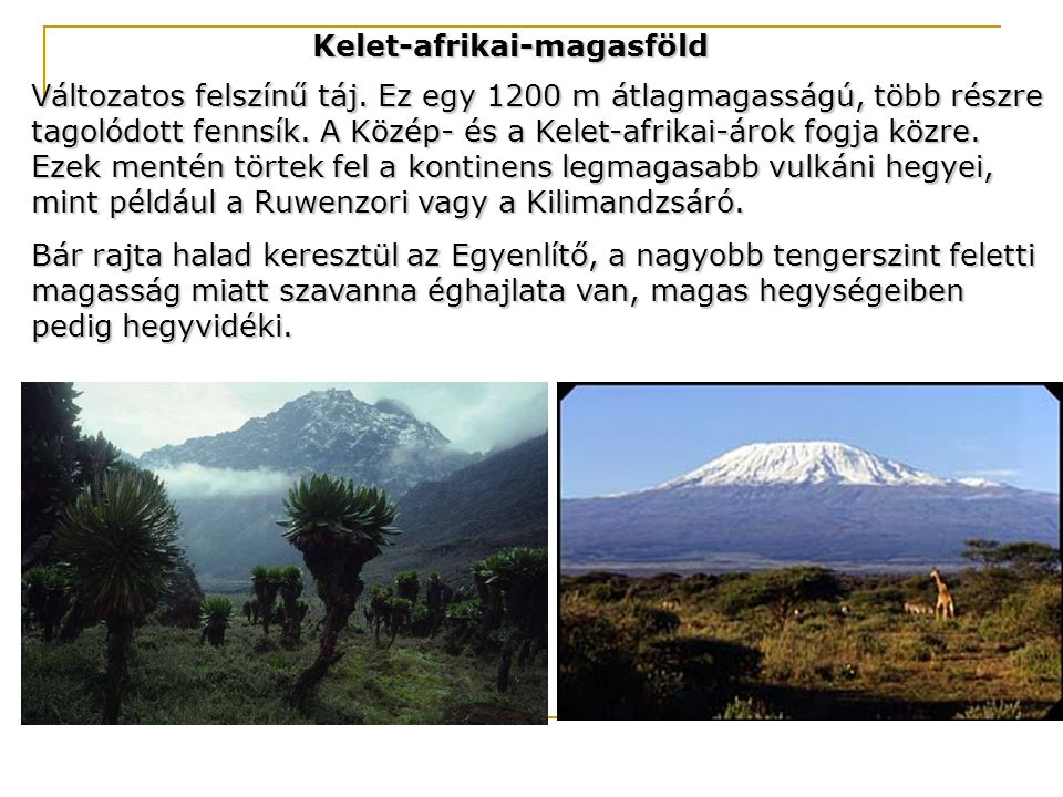 Kelet-afrikai-magasföld